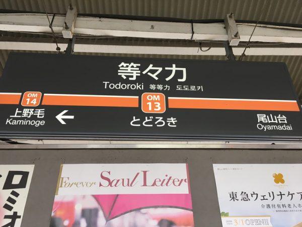 等々力渓谷へのアクセスは東急大井町線等々力駅から