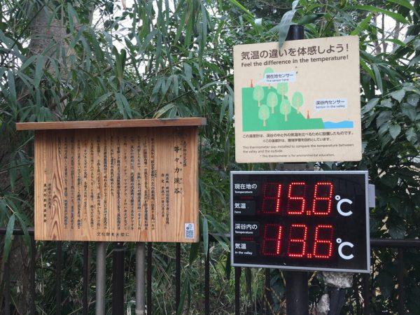 等々力渓谷入り口での気温測定