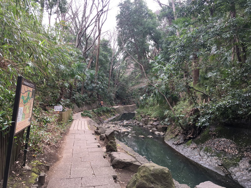 等々力渓谷へのアクセスと見どころ | 自然の癒しと等々力不動尊