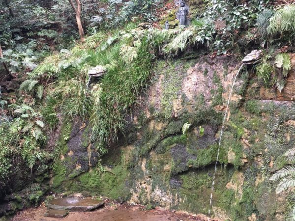 等々力渓谷の見どころ、不動の滝