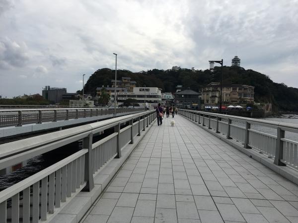 とびっちょへは江ノ島までの橋を渡ります。