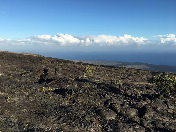 ハワイ島人気現地ツアーの口コミ | 噴火でできた溶岩台地からの絶景